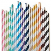 Rainbow Retro Paper Straws Set of 24