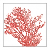 Red Coral Reef Beverage Paper Napkins