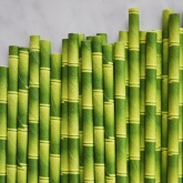 Bamboo Paper Straws Set of 144