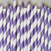 Purple and White Stripe Paper Straws Set of 23