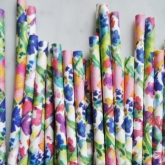 Floral Fiesta Straw Set of 30