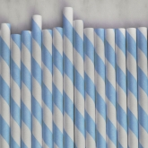Light Blue and White Striped Paper Straws Set of 23