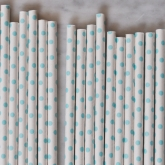 Light Blue Tiny Dot Paper Straws Set of 23