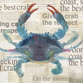 Blue Crab Newspaper Luncheon Paper Napkins
