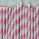 Pink and White Barber Striped Paper Straws Set of 23