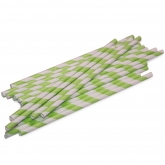 Mint and White Barber Striped Paper Straws Set of 23
